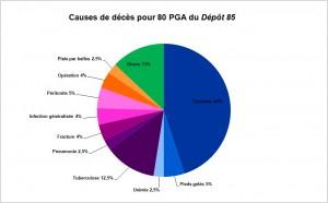 Causes de décès pour 80 PGA du Dépôt 85 - A-L CHARLES 2015